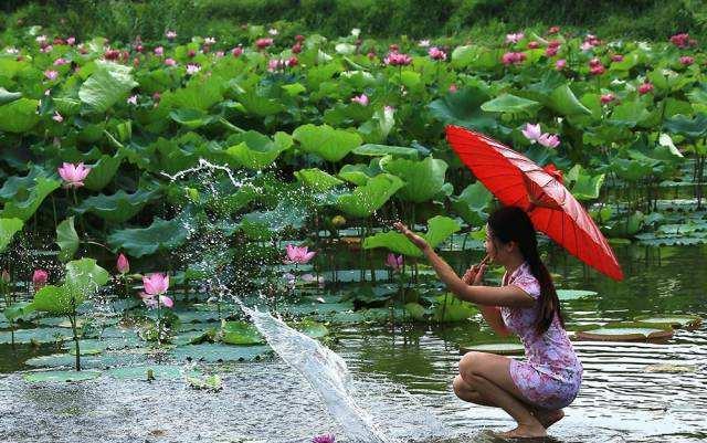 山东省旅游摄影协会微山湖南阳古镇摄影创作团招募(图1)
