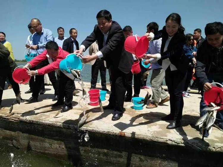 微山县第七届放鱼节暨首届湿地樱花节摄影创作团招募(图4)